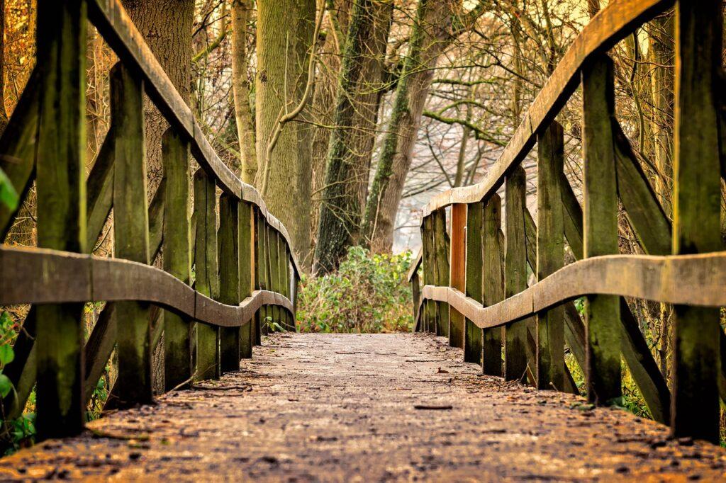 away, bridge, wood